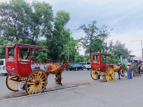 "The Art of Philippines through transportation ""Kalesa"" thumbnail"