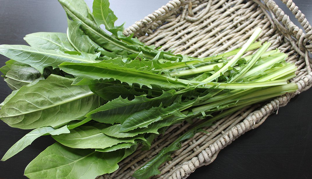 What the Heck Do I Do with Dandelion Greens?