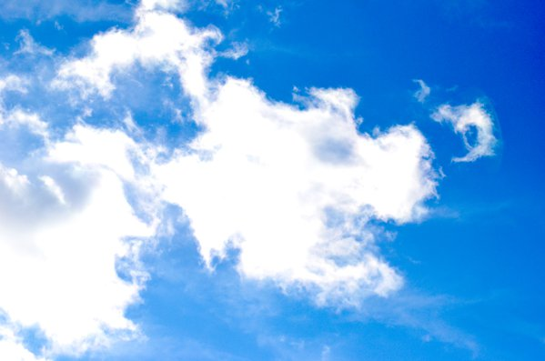 Dog In The Clouds thumbnail