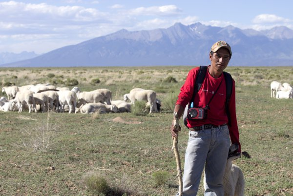 A Spanish sheepherder watching over his herd thumbnail