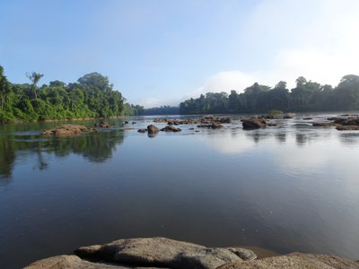 The Oyapock river, between Brazil and French Guiana, is one of the few waterways that a new paper identifies as being relatively undamaged by humans.