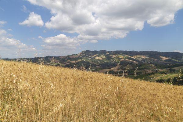 Countryside San Savino thumbnail