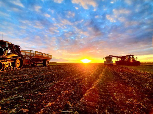 Kittson County Harvest Nights thumbnail