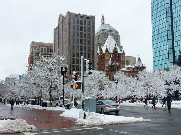 Ice covered trees in Copley Square Boston MA thumbnail