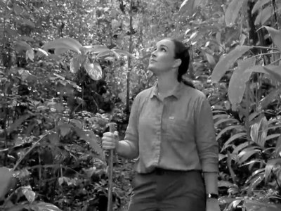 Happy Earth Day 2021! Hillary Hughes, Panamanian actress, visits the Smithsonian Tropical Research Institute's Agua Salud Project during the filming of videos in Spanish and English to share hope for the success of tropical forest reforestation informed by the largest experiment of its kind in the tropics. (video still)