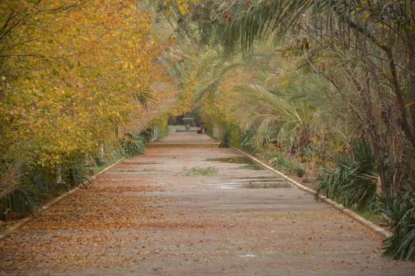 A beautiful park thumbnail