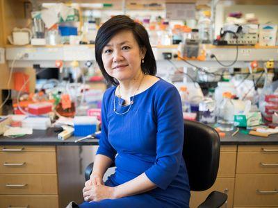 MIT professor Li-Huei Tsai may have a new treatment for Alzheimer's disease.