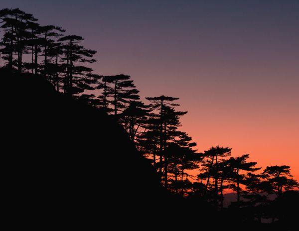 Twilight On Mount Huang thumbnail