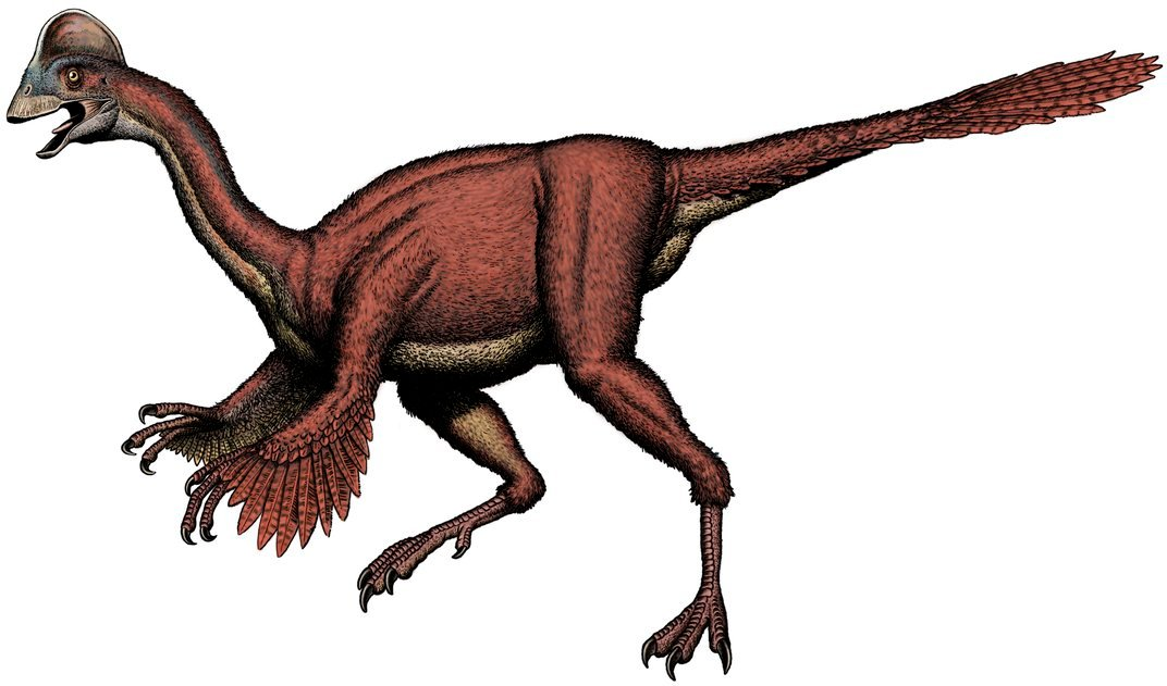 Scientists Discover a Large and Feathered Dinosaur that Once Roamed North America