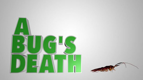 Preview thumbnail for Ask Smithsonian: Why Do Bugs Die on Their Backs?