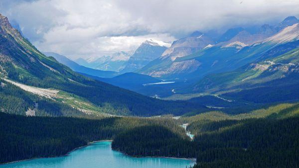 View From Peyto Lake, Alberta, Canada thumbnail