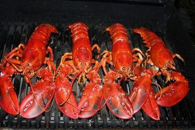 20110520090133grilled-maine-lobster_Dana-Moos_3280741129_3c7a451c4c-400x266.jpg