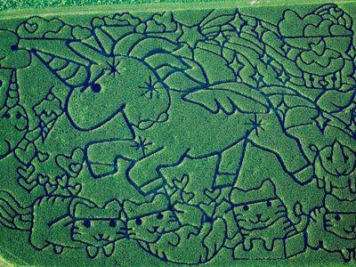 "The 2016 corn maze ""Rainbows, Kittens, and Killer Baby Unicorns"" at the Treinen Farm in Lodi, Wisconsin."