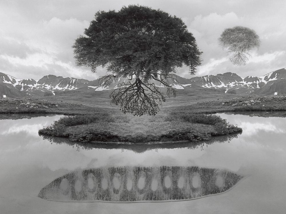 dreamscapes.jpg