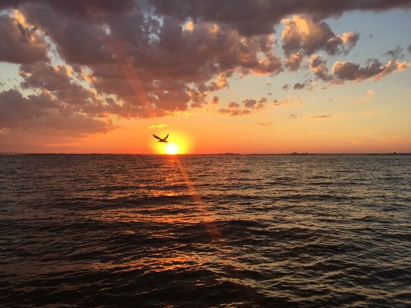 Sunset from the Fire Island Lighthouse July 23, 2016 thumbnail