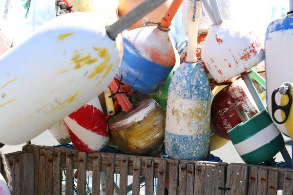 buoys at the beach thumbnail