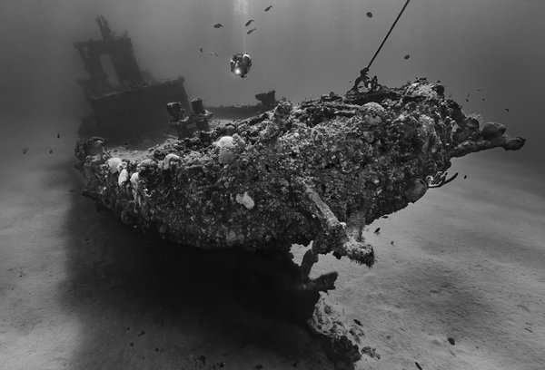 A diver hovers over the wreck of the Northwind tug boat in St. Croix, USVI. thumbnail