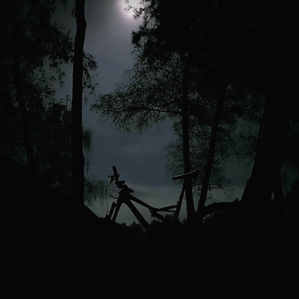 Silhouette of a mountain bicycle amid trees on the full moon background, Krakow, Poland  thumbnail