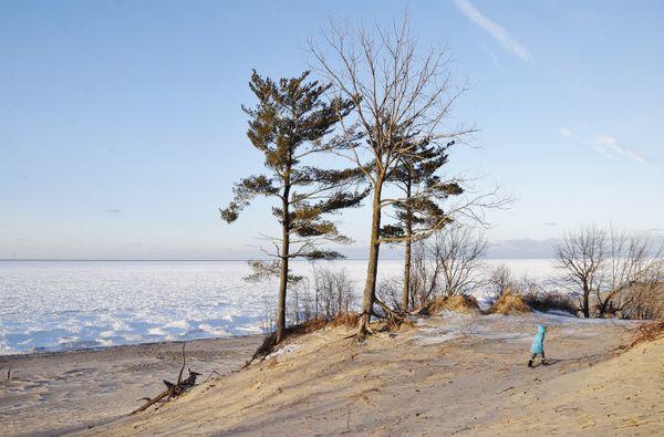 Frozen dunes thumbnail