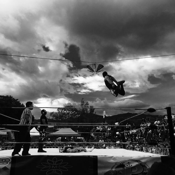 Flying Wrestler thumbnail