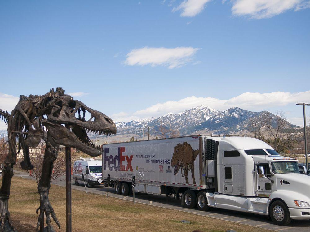 T rex truck