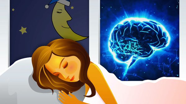 Preview thumbnail for Ask Smithsonian: Why Do We Sleep?
