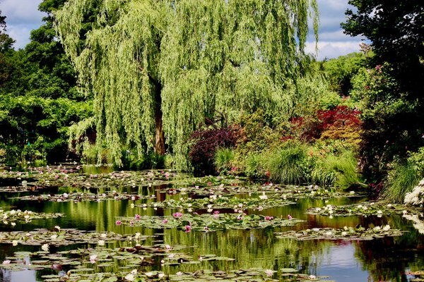 The Pond at Giverny Garden thumbnail