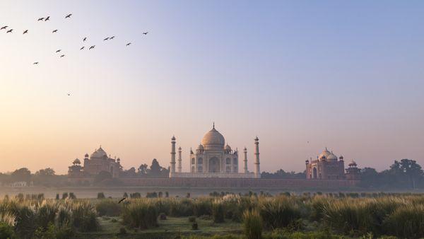 Taj Mahal Sunrise thumbnail