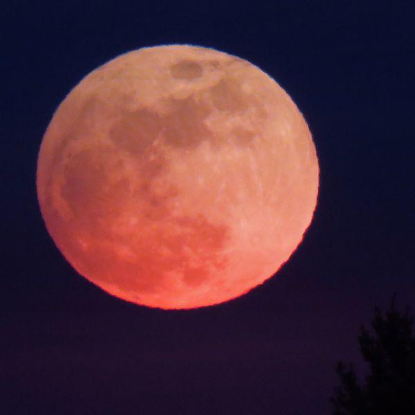Full Moon Prenumbral Lunar Eclipse thumbnail