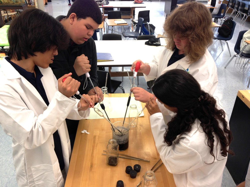 BioTech students preparing solution for orchids