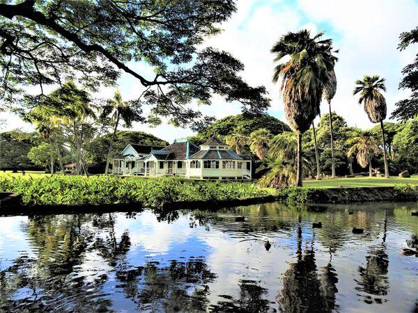 Hawaiian Landscape thumbnail