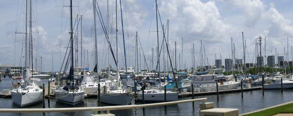 SAILING AT ST. PETERSBURG, FL. thumbnail