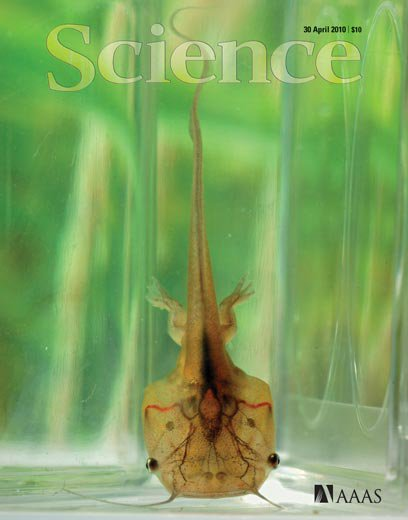 science_mag_cover.jpg