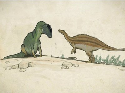 A cautious Camptosaurus approaches a resting Allosaurus. Even though the carnivore undoubtedly hunted the herbivore at times, the two weren't constantly at war with each other.