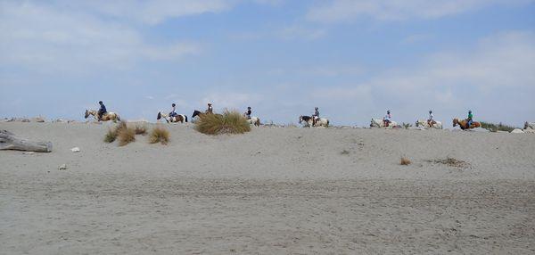 Riding on the Dune thumbnail