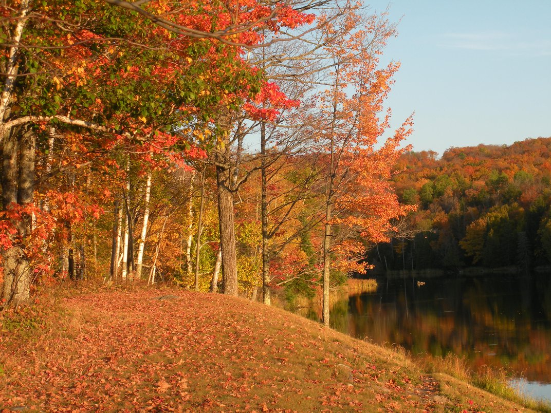 Eight Places to See Amazing Fall Foliage Outside of New England