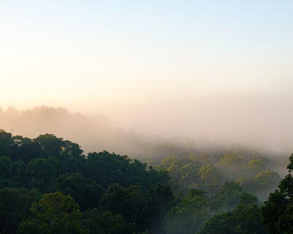 A misty Ohio sunrise thumbnail