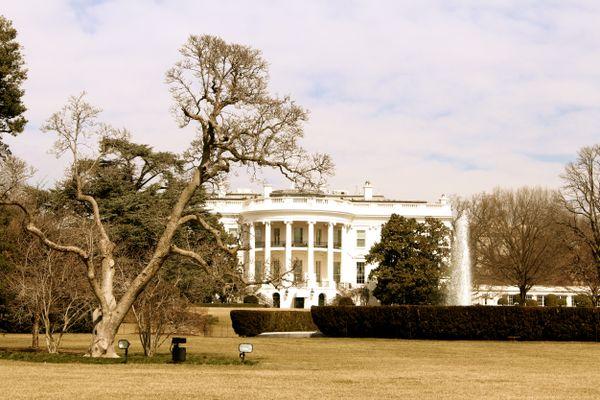The White House thumbnail