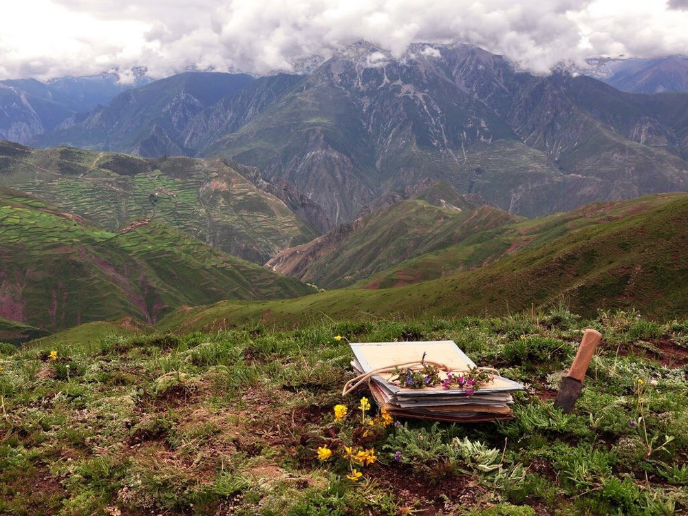 A plant press in the foreground, with a scenic view of mountains and meadows in the background