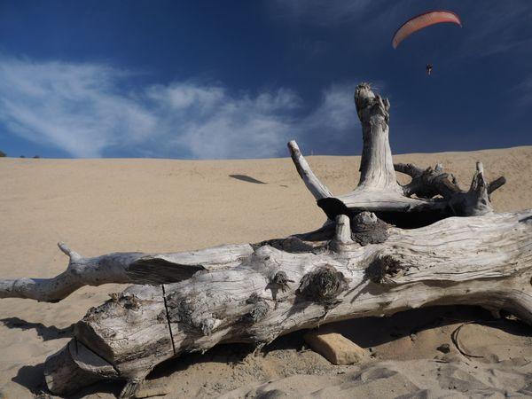 Parasailing sand dunes thumbnail