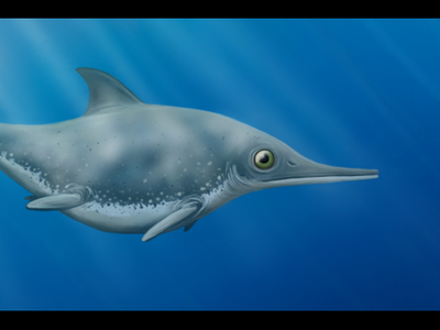 An artist's illustration of a newly described species of ichthyosaur called Thalassodraco etchesi swimming in the Late Jurassic seas off the coast of England.