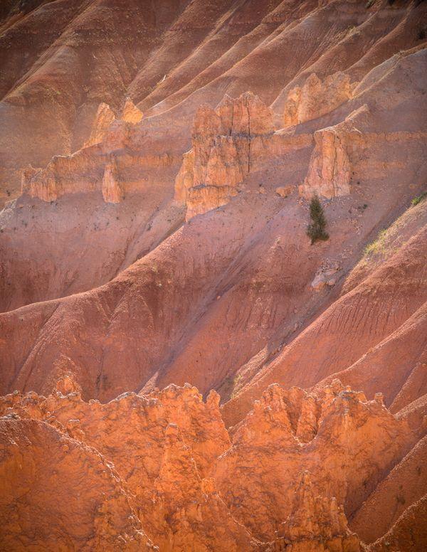 Bryce Canyon at Dusk  thumbnail
