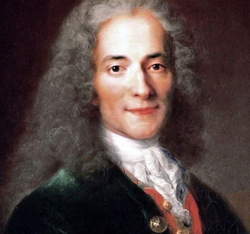 Atelier_de_Nicolas_de_Largillière,_portrait_de_Voltaire,_détail_(musée_Carnavalet)_-002.jpg