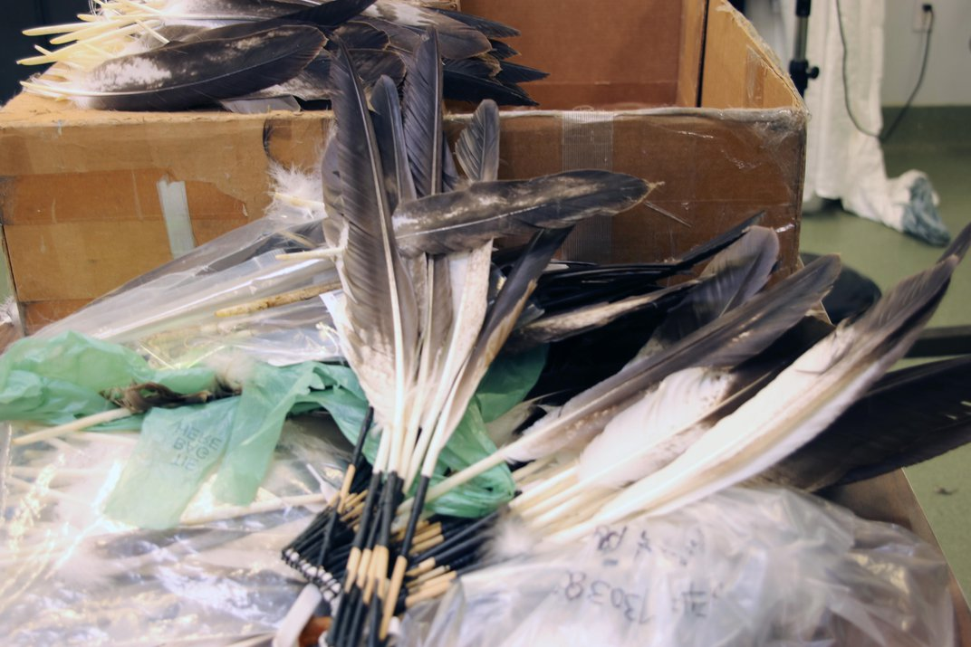 Inside a Remarkable Repository that Supplies Eagle Parts to Native Americans and Science