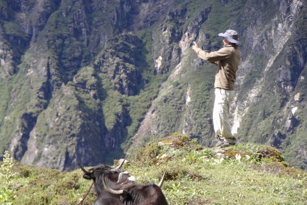 Photographer with Yak thumbnail
