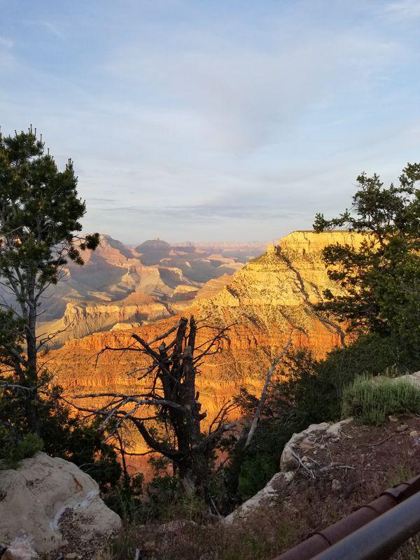 Grand Canyon in June thumbnail