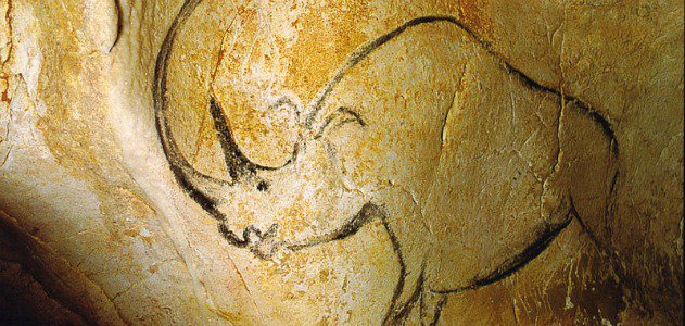 Someone painted this rhinoceros