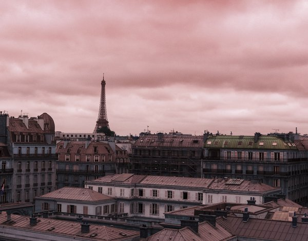 Paris In Pink thumbnail