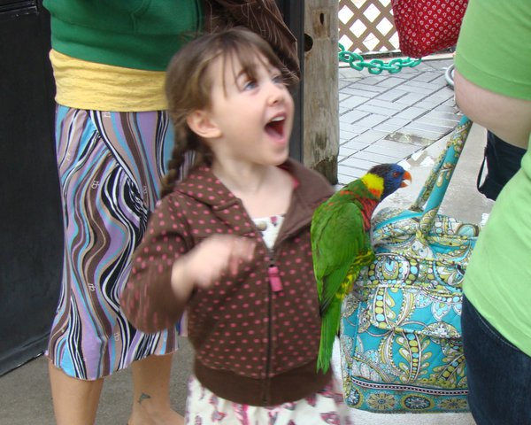 Georgia's astounded by the lorikeets thumbnail