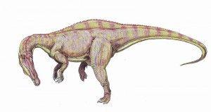 20110520083206800px-Suchomimus2-300x159.jpg